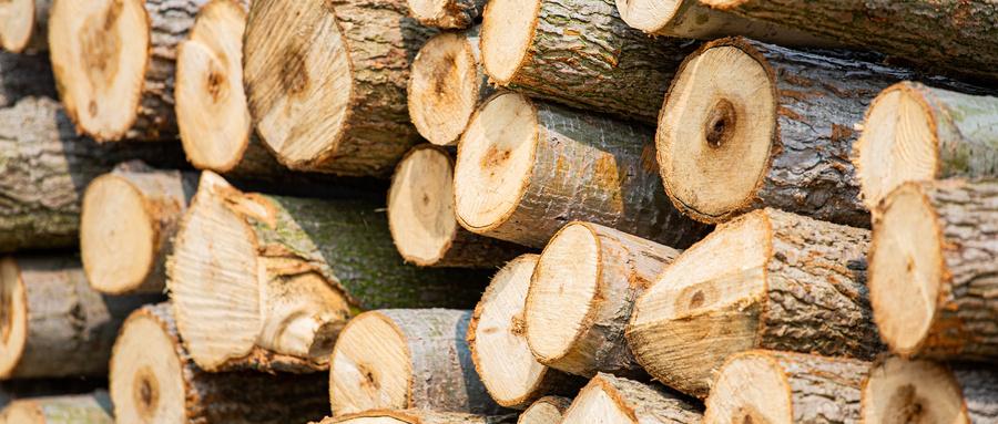 摄图网_501611465_wx_木材木纹(企业商用).jpg