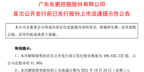 东鹏控股:5亿股限售股10月20日解禁 占比41.96%
