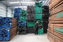 每立方木材疯涨6000元!有木材加工厂无奈转让!