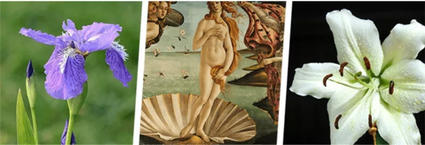 卫生间竟能如此复古与优雅?这款有魔法的瓷砖太神了!!